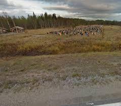Walking Dead Google Map Finnland Mann Sucht Adresse Mit Google Maps U2013 Und Entdeckt