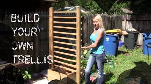 how to make a cucumber trellis growing cucumbers youtube