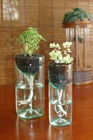 self water planter self watering plant pots drinking animal planters water animals