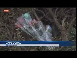 police say speed a factor in fatal cape coral crash on del prado