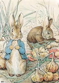 beatrix potter rabbit beatrix potter traditional rabbit giftwrap 2 00 a great