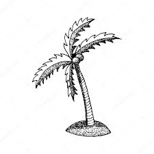 hand draw a palm tree in the style of the sketch to design cards