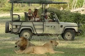 safari last minute safari from zanzibar dar es salaam eco u0026 culture