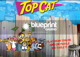 top cat uk blueprint release top cat on html5 ios and android g3 newswire