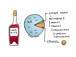 wine facts kinds of wine drink wine for science wine folly