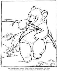 printable zoo animal coloring pages 500 best animal coloring images images on pinterest drawings