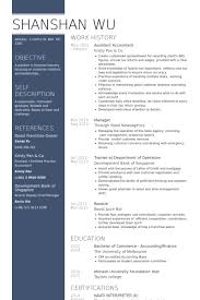 Resume Sample For Accountant Position by Accountant Resume Samples Visualcv Resume Samples Database