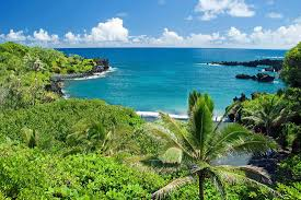 best hostels in maui for backpackers and solo travellers budget