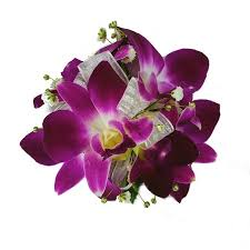 orchid wrist corsage purple orchid corsage orchid wrist corsage frugalflower