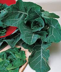 georgia collards seeds and plants vegetable gardening at burpee com