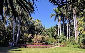 Sunken Gardens Family Membership St Petersburg U0027s Historic Sunken Gardens Melts Stress Away
