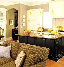 Small Kitchen Living Room Design Ideas Living Room Kitchen Designs Open Concept Kitchen Living Room