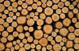 how to start a wood cutting u0026 logging business chron com
