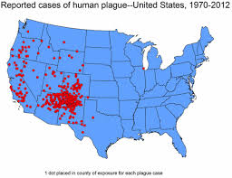 New Mexico On Map Fleas Carrying The Bubonic Plague Have Been Found In Arizona