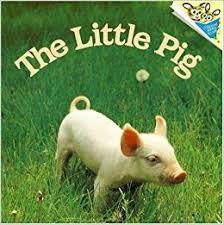 pig pictureback judy dunn phoebe dunn