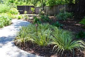 Shade Garden Ideas Shade Garden Ideas Photograph Shade Garden Redwoods J