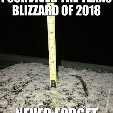 Funny Texas Memes - put me like snow in south texas
