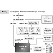 analytical validation of the next generation sequencing assay for