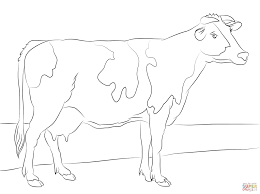 holstein cow coloring page free printable coloring pages