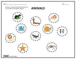 vertebrates and invertebrates by innovative teacher tpt
