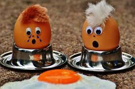 free images cute meal food pumpkin halloween egg yolk fun