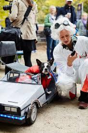 Human Dog Halloween Costumes 40 Dog Costumes Dog Dog Halloween Pet Costumes