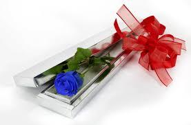 Roses In A Box Single Blue Rose In A Box