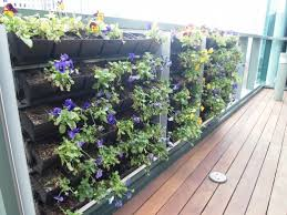 growing a deck balcony or patio vegetable garden dengarden