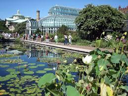 garden family brooklyn botanic garden u2013 urban advantage nyc