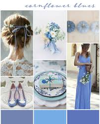 corn flower blue best 25 cornflower wedding ideas on cornflower