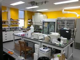 labpix 2 biolab jpg 4000 3000 laboratories pinterest labs