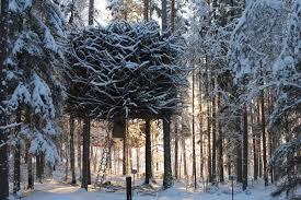 tree hotel sweden treehotel se the bird s nest
