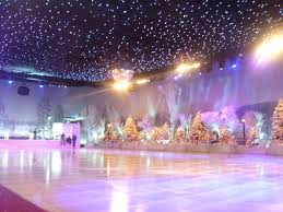 best 25 indoor ice skating rink ideas on pinterest ice skating