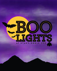 houston zoo lights coupon featured zoo events utah s hogle zoo