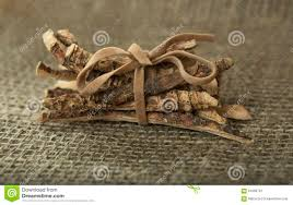 Sweet Flag Herb Calamus Root Or Sweet Flag Stock Image Image Of Acorus 61990731