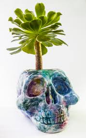 Cute Plant by Www Astralobjetos Com Maceta Calavera Galaxia Ideal Para