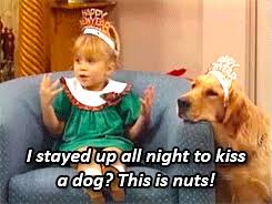 New Years Eve Meme - new years eve gif find share on giphy