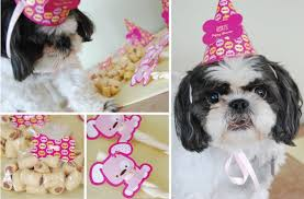 puppy party supplies make creative puppy party favors with dog shaped cut outs big