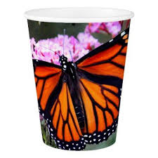 monarch butterfly 5100 paper cups home gifts ideas decor special