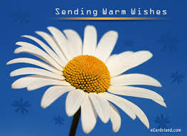 sending warm wishes choose ecard from flowers ecards