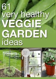 best 25 veggie gardens ideas on pinterest gardening vegetable