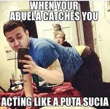 The Fuq Meme - coolest puta sucia meme pinterest wallpaper site wallpaper site