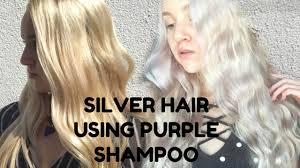 silver hair how to achieve silver hair using purple shoo