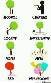 Different Memes - the different satages of drugs with trees by meltord meme center