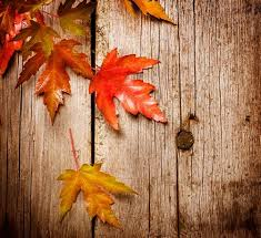 134 best fall wallpapers images on background images