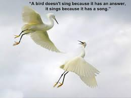 birds quotes 18 728 jpg cb 1275988565