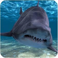 shark apk shark attack live wallpaper 1 0 apk personalization