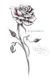 100 rose thorn tattoo designs best 25 pink rose tattoos
