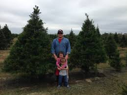 harvest your own christmas tree gardening in the panhandle