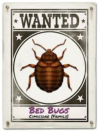 What Do Exterminators Use To Kill Bed Bugs Just Bed Bugs Exterminators Toronto Heat Treat Pest Control